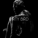 DIRTY BIRD – Fotografien von Steven James Scott